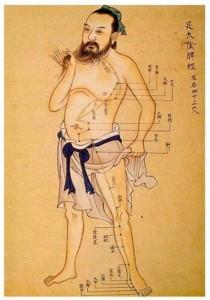 Acupuncture Meridian Man