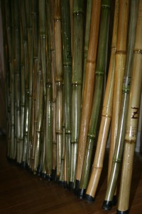 Z-Sticks are for Walking, Stretching , Striking and more!