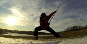 reverse stab farm snow